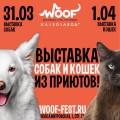 выставка собак из приютов woof fest